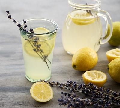 Lavendel Limonade mit bio Lavendelblüten aus kontrolliert biologischem Anbau, leckere Abkühlung für den Sommer