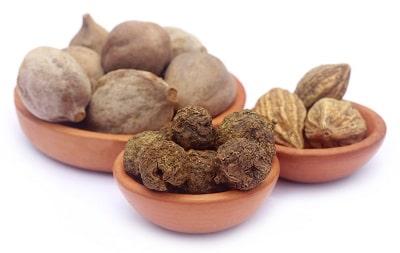 Die drei Königsdrüchte des Ayurveda, Haritaki-, Amla- und Bibhitakifrucht aus kontrolliert biologischem Anbau